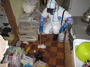 特殊清掃サービス